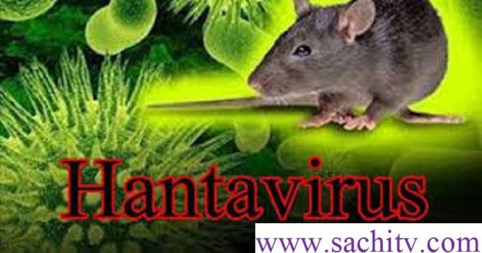 Corona next now comes to Hantavirus | Hantavirus Kills a man Very Deadly Dangerous